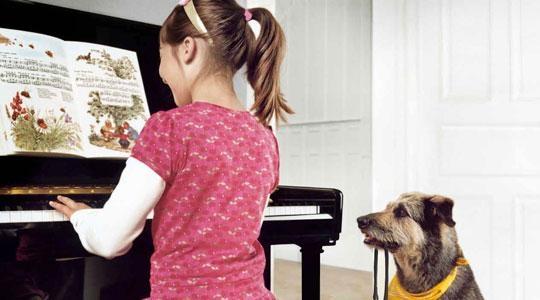 MƯỢN ĐÀN PIANO MIỄN PHÍ ĐỂ HỌC